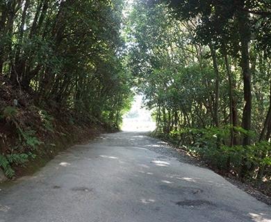 みのう山荘の周辺の風景